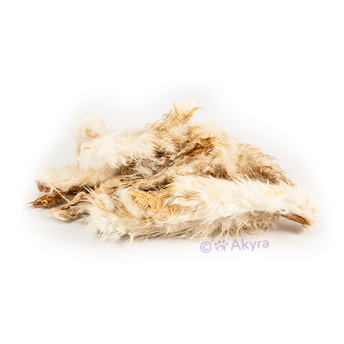 Rabbit skin with coat